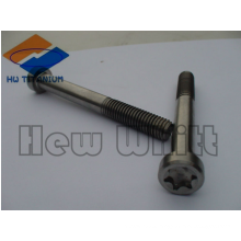 high end Titanium torx head bolt