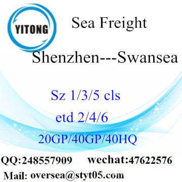 Shenzhen Port Sea Freight Shipping para Swansea