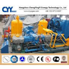 CNG29 Skid-Mounted Lcng CNG LNG Kombi-Tankstelle