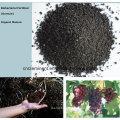 Abono foliar orgânico orgânico de algas marinhas com certificado CE