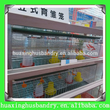 professional galvanized baby chick cage for sale