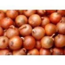 Хорошее качество Новый урожай свежий желтый лук