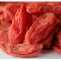 Китайский традиционный здоровье фрукты ягоды Годжи (волчья ягода) -380ПК/50г