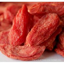 Ningxia Nativa Seca Goji Berry Wolfberry