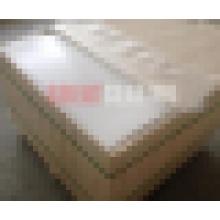 100% virgen de PTFE / lámina de teflón (GS350)
