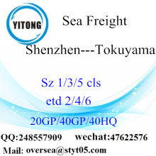 شنتشن ميناء الشحن البحري الشحن إلى توكوياما