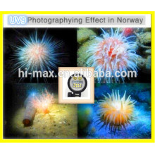 diving equipment mini led button lights camera