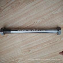 Personnaliser le boulon et les écrous en acier inoxydable M33 * 150