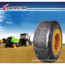 Agricultural Implement Tire (10.0/80-12)