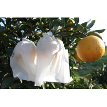 Tangerine Fruit Protection Bag