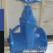 DIN Cast Iron RF Flanged End Soft Seat Gate Valve
