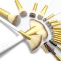 18pc Professional Essential Pinsel mit weißem PU-Beutel