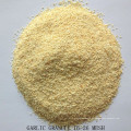 Dehydriertes Knoblauchgranulat 5-8 / 8-16 / 16-26 / 26-40 / 40-80 Mesh