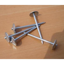 China Supplier of Umbrella Roofing Nail