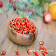 Ningxia  High Quality Organic Dried Goji Berry