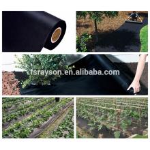 El mejor control de malas hierbas del césped de la tela del PP negro sin el pajote