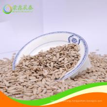 Bakery grade sunflower seeds kernel