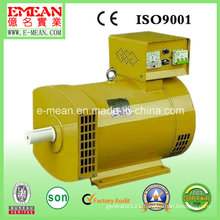 40kw Synchronous Generators Brush Alternator Stc /St