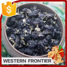 Fornecimento de alimentos alimentares saudáveis estilo seco preto goji berry