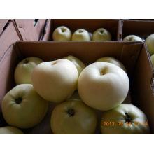 Gloden leckerer Apfel in großer Menge mit niedrigem Preis
