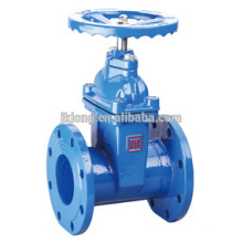 1101 Cast Iron Resilient Seated flange Gate valves