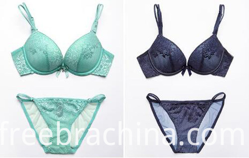 lace-bra-sets-color2