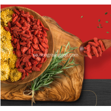 Ningxia Hong Rising Goji Berry
