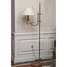 Brass Finish Iron Floor Lamp (SL82163-1F)