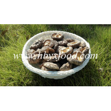 No Pollution Organic Dried Shiitake Mushroom Dried Mushroom