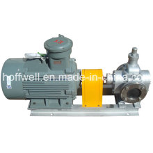 Cast Iron Gear Oil Pump (YCB 3.3-0.6)