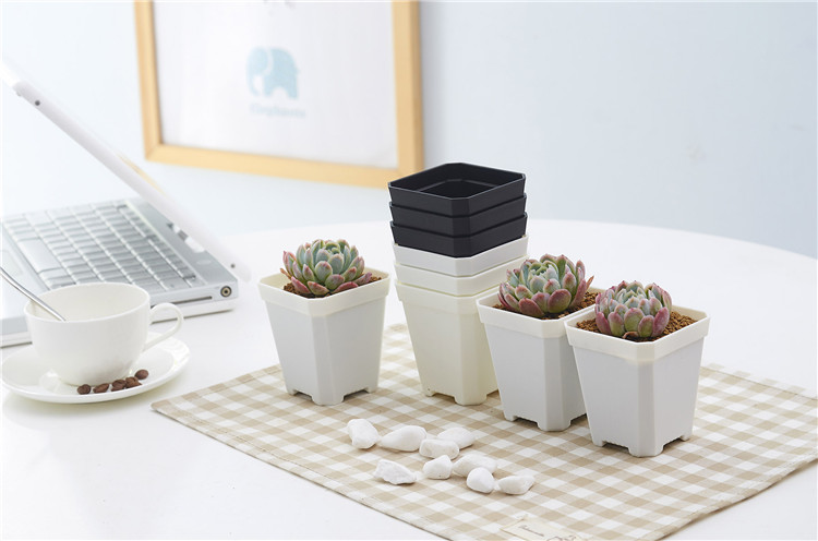 mini flower pot