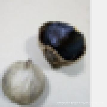 China heiß schwarz einzigen Knoblauch Knoblauch