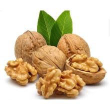 Chinese Xinjiang Dried Walnut in Shell/28/30/32/34/36mm