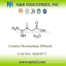 Venda por atacado de monohidrato de creatina em pó 99,5% 80mesh e 200mesh 6020-87-7
