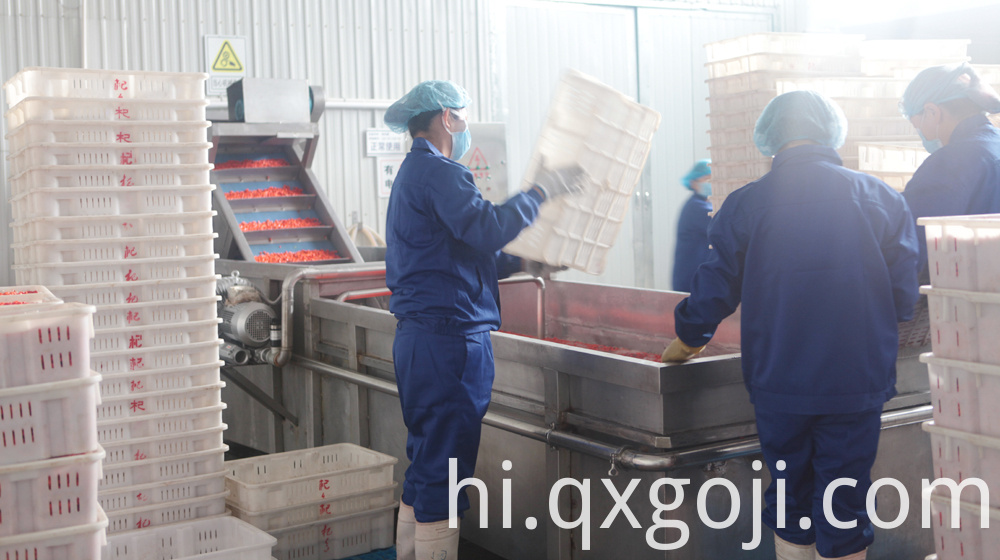 GMP Factory Supply Goji Juice