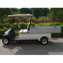 Chine Mini-camion cargo électrique