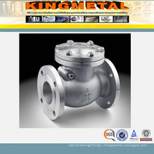 Stainless Steel Swing Check Valve for Industry