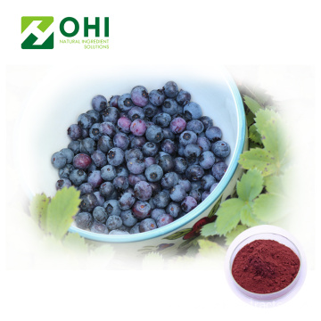 Blueberry Extract 25% Anthocyanidin