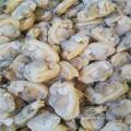 Frozen seasoned clam meat
