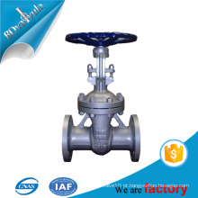 Qualidade OEM Casting precisão mão roda operado válvula de portão