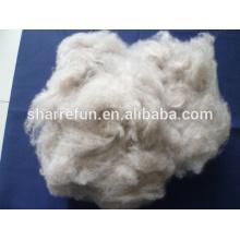 100% pur fournisseur de fibre Cachemire brun cardé et épilé