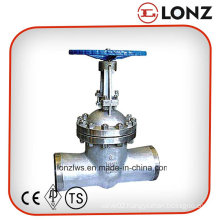 ANSI Stainless Steel Butt Weld Gate Valve