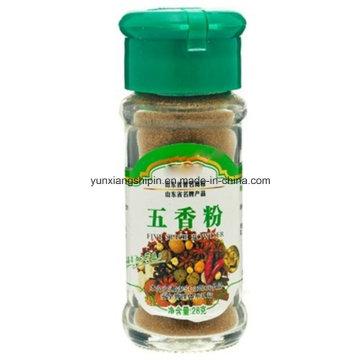 Cinco especias en polvo, condimentos mezclados