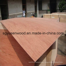 Melhor qualidade de decoração de madeira compensada