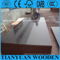 Concrete Shuttering Plywood for Construction