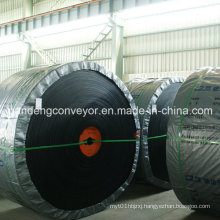 Conveyor Belt/ Flame-Resistant Conveyor Belt/Conveyor Belt Supplier