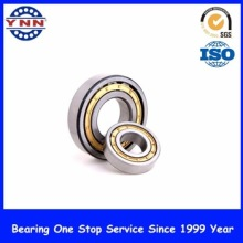 Cheap and Stable Performance Cylindial Roller Bearing (NJ 408)