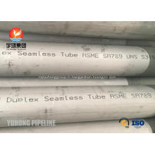 Tubes sans soudure en acier duplex ASTM A789 UNS S31500