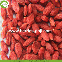 Perder peso Natural Dried Nutrition Tibetano Goji Berries