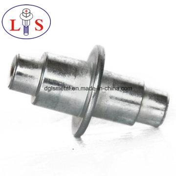 Vendas Diretas de Fábrica de Rebites de Aço Inoxidável / Rebites Não-Stardard